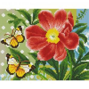 409-ST-PS Бабочки и цветок Алмазная вышивка мозаика Белоснежка
