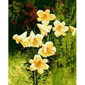 Желтые колокольчики Раскраска картина по номерам на холсте