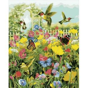 Колибри и бабочки Раскраска картина по номерам на холсте