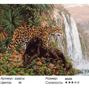 Леопарды у водопада Раскраска картина по номерам на холсте