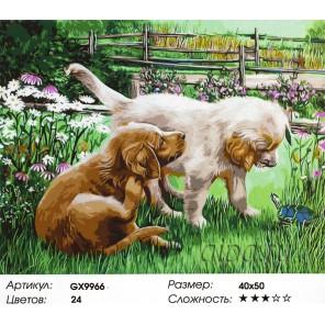 Щенок и черепаха Раскраска картина по номерам на холсте