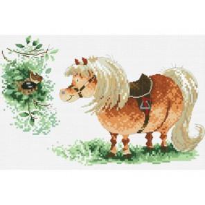 Пони и птичка Набор для вышивания Белоснежка