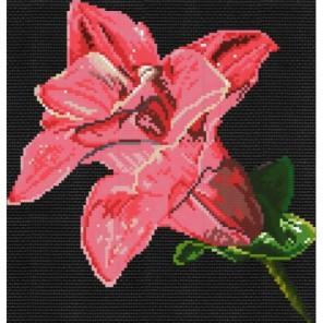 Мерцающий цветок Набор для вышивания Белоснежка