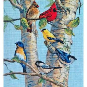 Птички на березе 35252 Набор для вышивания Dimensions ( Дименшенс ) в рамке