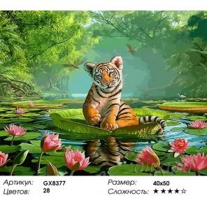 Количество и сложность Тигренок в лотосах Раскраска картина по номерам акриловыми красками на холсте