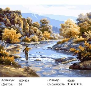 Количество цветов и сложность Рыбалка Раскраска картина по номерам акриловыми красками на холсте