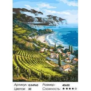 Виноградники Лацио Раскраска картина по номерам акриловыми красками на холсте