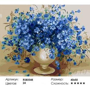 Количество цветов и сложность Пышный букет васильков Раскраска картина по номерам акриловыми красками на холсте