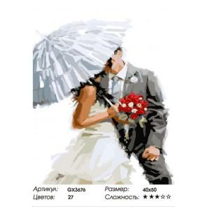 Количество цветов и сложность Свадебный поцелуй (художник Ричард Макнейл) Раскраска картина по номерам акриловыми красками на хо