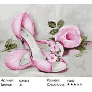Количество цветов и сложность Винтажные туфельки Раскраска картина по номерам акриловыми красками на холсте