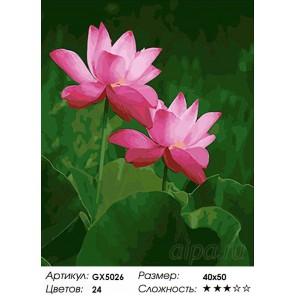 Количество цветов и сложность Лотосы Раскраска картина по номерам акриловыми красками на холсте