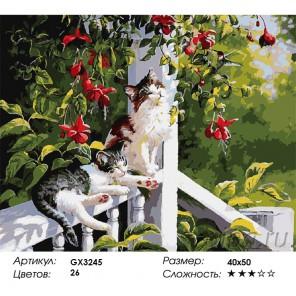 Количество цветов и сложность Котята на террасе Раскраска картина по номерам акриловыми красками на холсте