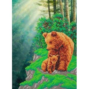 Медвежья семейка Набор для частичной вышивки бисером Паутинка