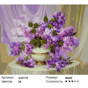 Количество цветов и сложность Волшебная сирень Раскраска картина по номерам акриловыми красками на холсте