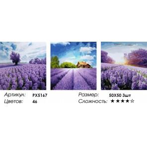 Триптих Лавандовое настроение Раскраска картина по номерам акриловыми красками на холсте