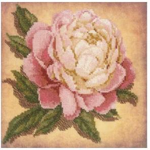 Пион Набор для вышивания Риолис