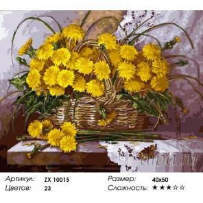 Количество цветов и сложность Одуванчики в лукошке Раскраска картина по номерам акриловыми красками на холсте