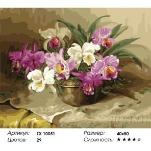 Количество цветов и сложность Букет из орхидей Раскраска картина по номерам акриловыми красками на холсте