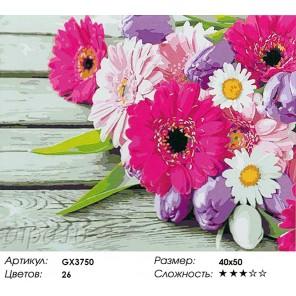 Количество цветов и сложность Герберы и тюльпаны Раскраска картина по номерам акриловыми красками на холсте