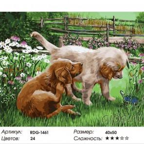Щенята и черепаха Раскраска картина по номерам акриловыми красками на холсте