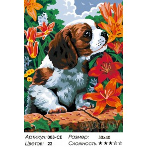 Щенок и лилии Раскраска ( картина ) по номерам акриловыми красками на холсте Белоснежка