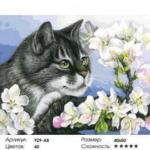 Яблоневый цвет Раскраска ( картина ) по номерам акриловыми красками на холсте Белоснежка