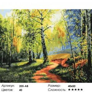 Березовая роща Раскраска картина по номерам акриловыми красками на холсте Белоснежка