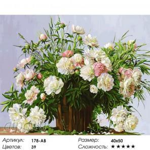 178-AB Пионовое настроение Раскраска картина по номерам акриловыми красками на холсте Белоснежка