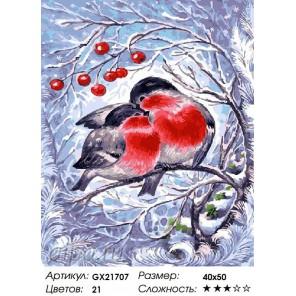 Снегири на ветке Раскраска картина по номерам акриловыми красками на холсте