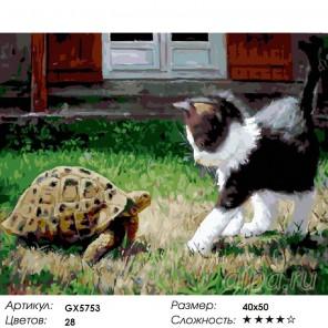 Количество цветов и сложность Котенок и черепаха Раскраска картина по номерам акриловыми красками на холсте