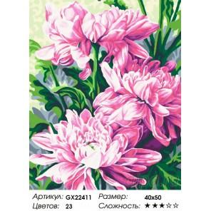 Крупные хризантемы Раскраска картина по номерам акриловыми красками на холсте
