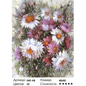Астрочки Раскраска ( картина ) по номерам акриловыми красками на холсте Белоснежка