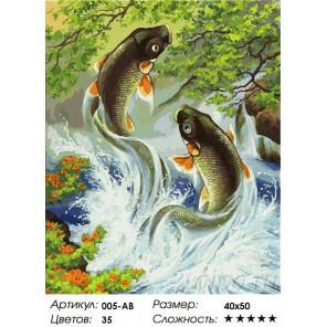 Прыгающие карпы Раскраска ( картина ) по номерам акриловыми красками на холсте Белоснежка