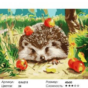 Количество цветов и сложность Ежик и яблоки Раскраска картина по номерам на холсте