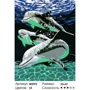 Количество цветов и сложность Дельфины в прозрачной воде Раскраска по номерам на холсте Menglei