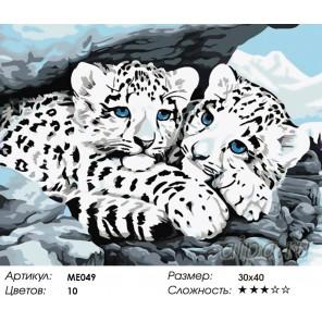 Количество цветов и сложность Детеныши снежного барса Раскраска картина по номерам на холсте Menglei