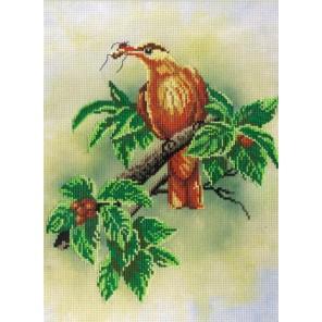 Птичка с ягодами диз.канва+мулине Набор для вышивания МП Студия