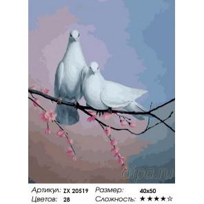 Количество цветов и сложность Голубиная верность Раскраска картина по номерам на холсте