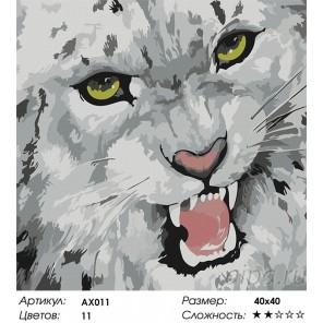 Барс Раскраска картина по номерам акриловыми красками Color Kit