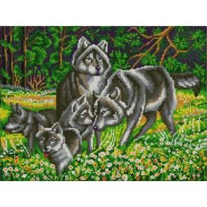 Пример оформления в рамке Волчья семья Канва с рисунком для вышивки бисером Конек 9838
