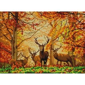 В лесу Канва с рисунком для вышивки бисером Конек