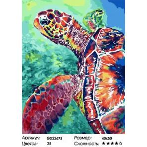 Количество цветов и сложность Водоплавающая черепаха Раскраска картина по номерам на холсте GX22673