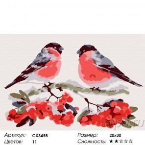 Снегири Раскраска по номерам на холсте CX3458