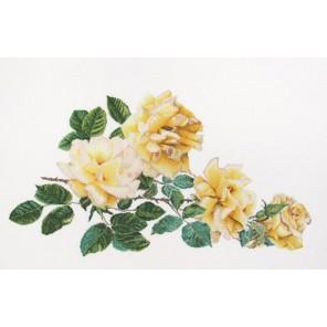 Роза Мира Набор для вышивания Thea Gouverneur 429A