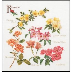Группа цветов розы Набор для вышивания Thea Gouverneur 3066