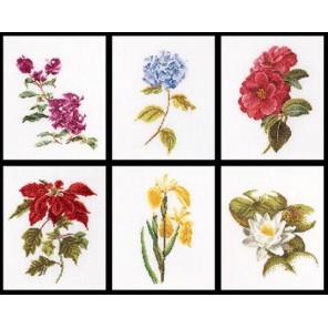Шесть цветочных исследований Набор для вышивания Thea Gouverneur 3087
