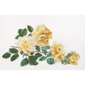 Роза Мира Набор для вышивания Thea Gouverneur 429