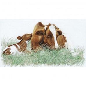 Рыжая корова Набор для вышивания Thea Gouverneur 449