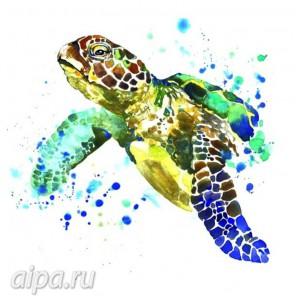 Черепаха Набор для вышивания VC08