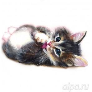 Котенок милашка Набор для вышивания